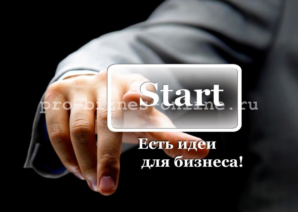 Бизнес в интернете. Идеи