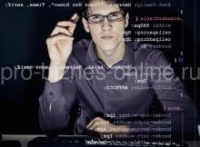 Профессия веб-программиста